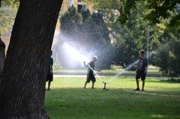 Cooling off in the Sprinklers